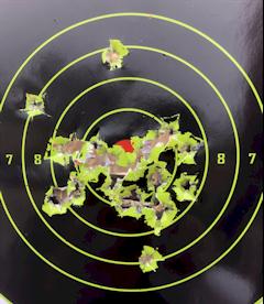 """PSAK-47 25 yard 8"""" Target"""