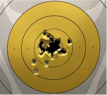 Walther PDP Target